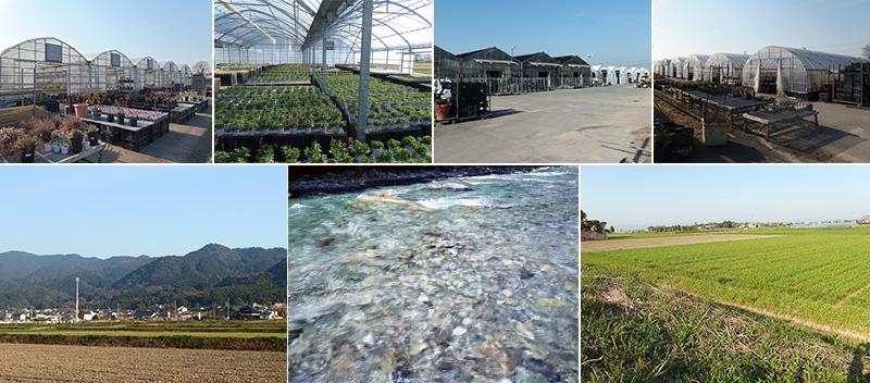 福岡久留米の大自然で作っています