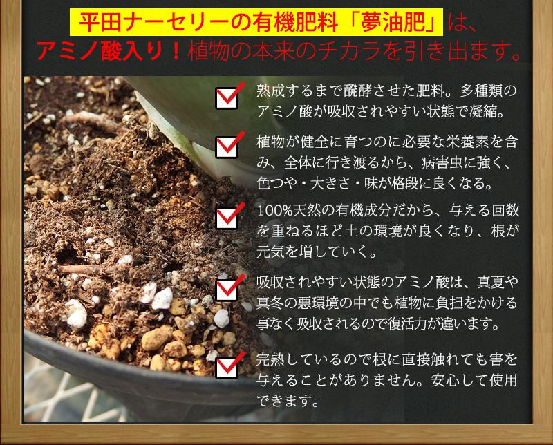有機肥料「夢油肥」の力2