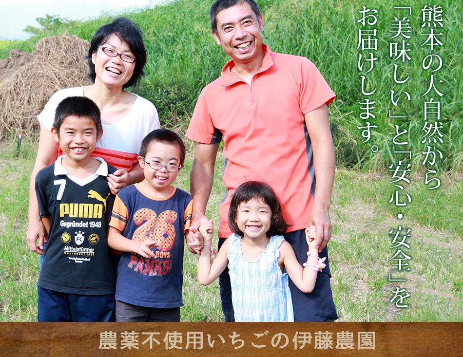 熊本伊藤農園、無農薬イチゴスパークリングワイン、巨峰ワイン製造