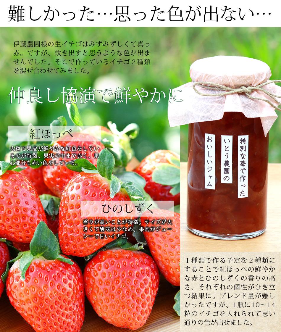 熊本伊藤農園難しかった、イチゴの色が出ない