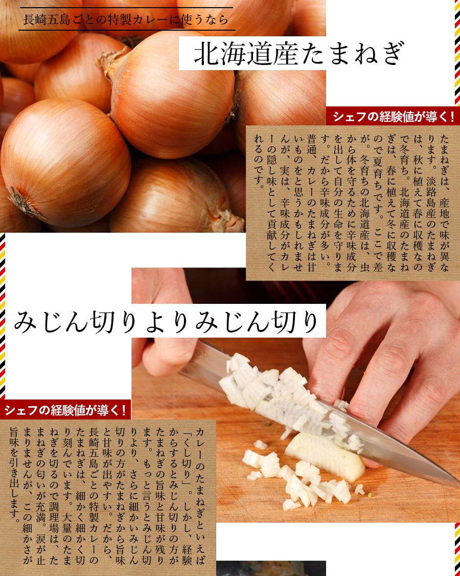 北海道産玉葱しよう